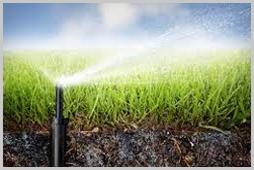 Irrigation Maintenance & Install